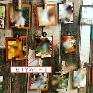 シールで貼って写真ボードを飾る